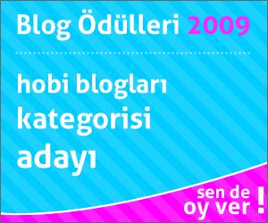 2009 Blog Ödülleri Hobi Kategorisi Adayı