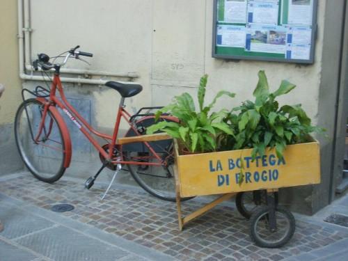 GREVE IN CHIANTI (12)