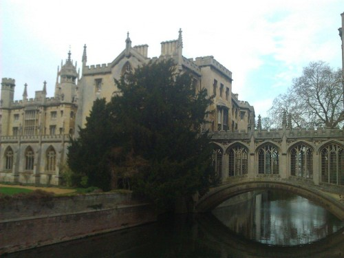 Cambridge (30)