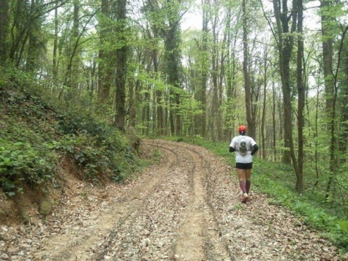running-blogs (3)