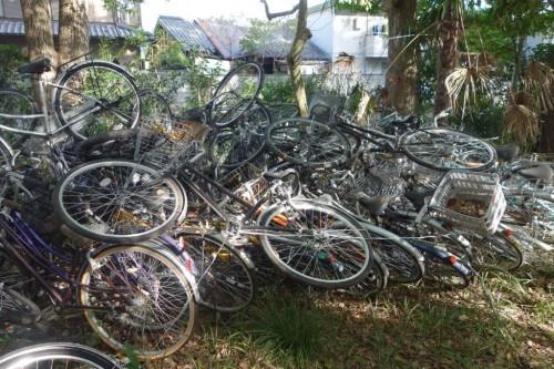 Japonya ve Bisiklet (31)