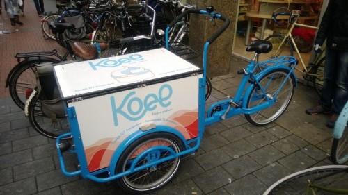 Amsterdam-Bisiklet (10)