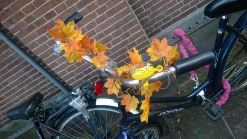 Amsterdam-Bisiklet (34)