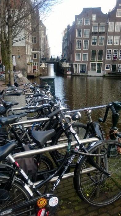 Amsterdam-Bisiklet (5)