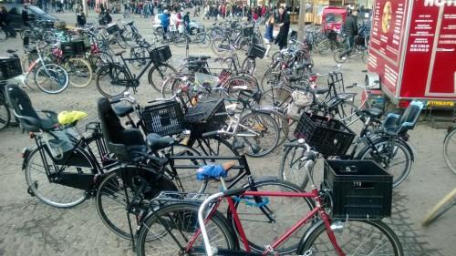 Amsterdam-Bisiklet (8)
