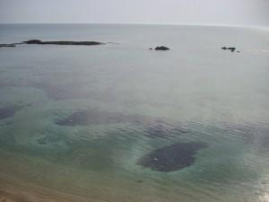 Temiz Akdeniz
