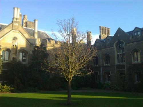 Cambridge (42)