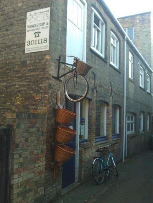 Cambridge (44)