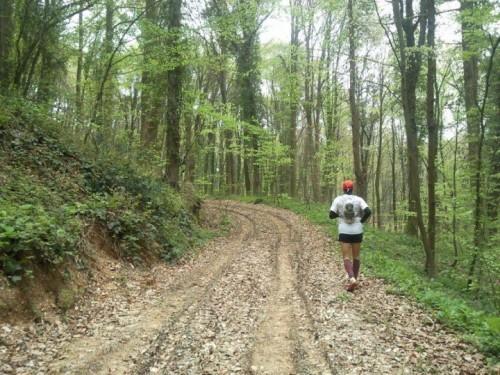 running-blogs (3)