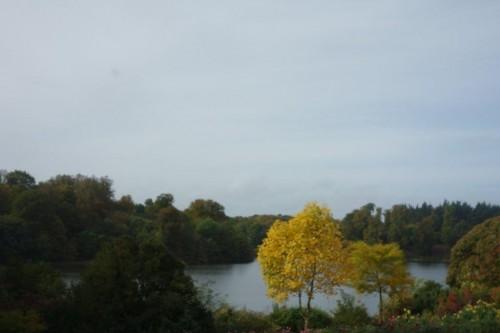 Blenheim-Palace (50)