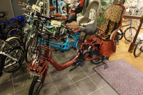 Japonya ve Bisiklet (26)