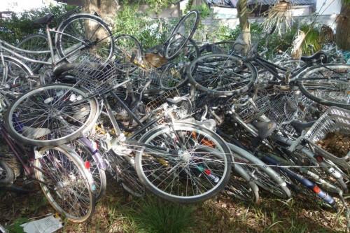 Japonya ve Bisiklet (32)