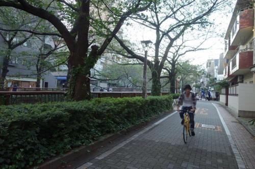 Japonya ve Bisiklet (34)