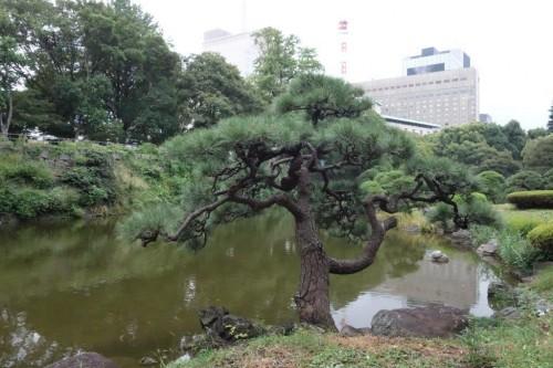 Tokyo (31)