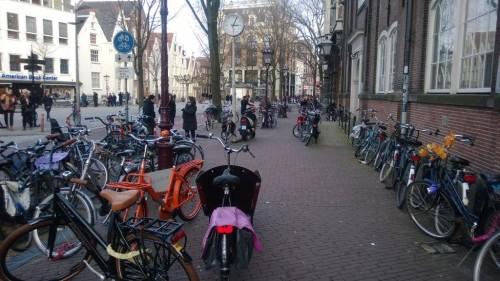 Amsterdam-Bisiklet (33)